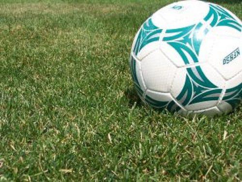 voetbal-en-gras_2344600